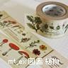 マスキングテープ mt_ex 図鑑 植物 MTEX1P34