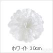 ペーパー ポンポン PAPER POM-POM お花 ポンポン ホワイト 30cm