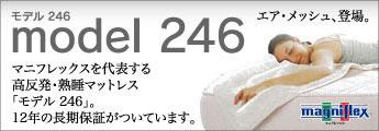 モデル246