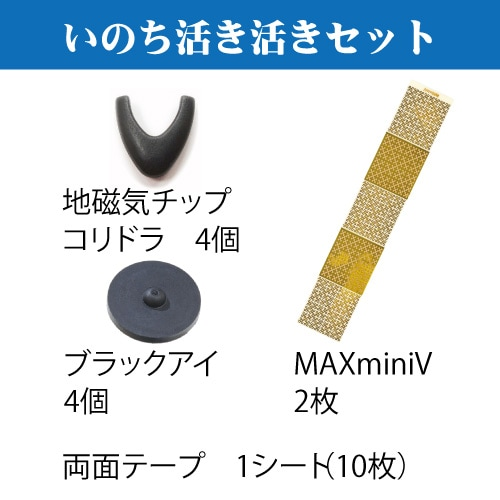 電磁波対策 丸山式コイル いのち活き活きセット