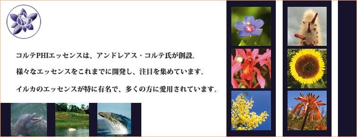 コルテPHIエッセンス ブランドイメージ