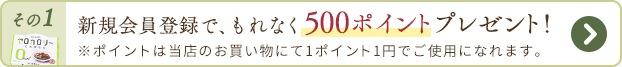 新規会員登録でもれなく500ポイントプレゼント