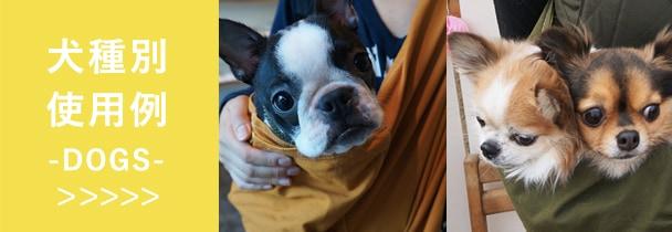 色んな犬種の子にドッグスリングをお使い頂いてます