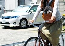 自転車で移動する時