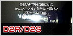 D2R D2S