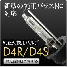 D4R/D4S