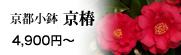 京都小鉢シリーズ 京椿