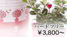 ハートツリー|HEART TREE シリーズ