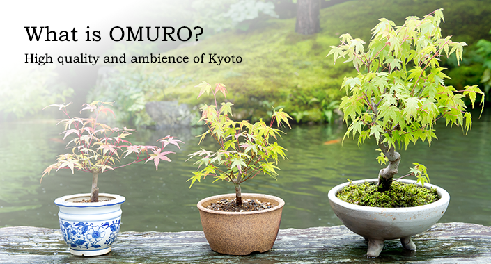 What is OMURO?