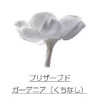 プリザーブド/ガーデニア(くちなし)