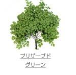 プリザーブド/グリーン