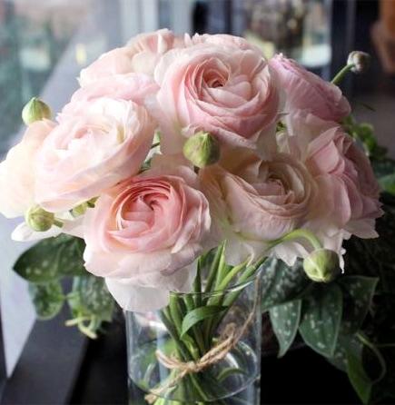 聴色 yurushi iro ~ 春に人気のラナンキュラスだけを贅沢に束ねたブーケ。かわいらしい淡ピンクの花束です。  ライフデコの愛妻の日のお花の贈り物をプレゼント