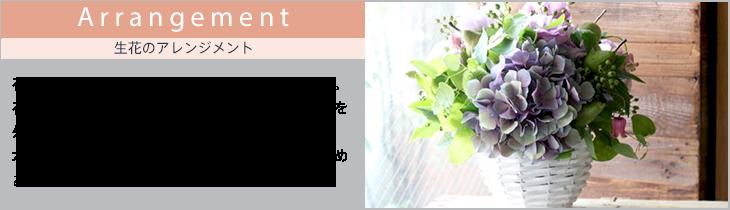 アレンジメント お誕生日の生花のギフト summergift