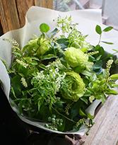 若竹 〜 wakatake 〜 [ アレンジメント L size ] 癒しのグリーンに想いを込めて お悔やみ・お供えに送る花