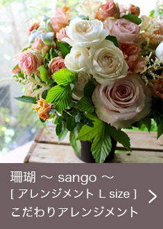 珊瑚 〜 sango 〜  [ アレンジメント L size ] こだわりアレンジメント
