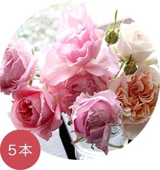 母の日のアレンジメント 本紫 mothers day