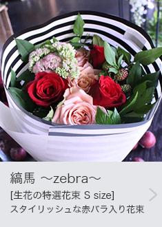 縞馬 〜zebra〜[生花の特選花束 S size]スタイリッシュな赤バラ入り花束をストライプのラッピングで。定番の人気のライフデコのフラワーギフト