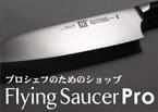 Flying SaucerPro