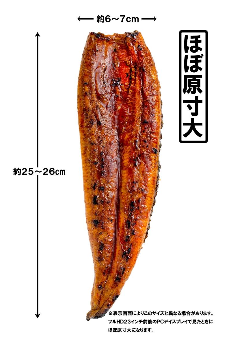 うなぎ蒲焼きアップ1
