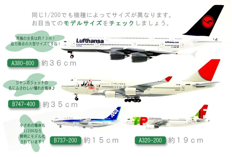 飛行機模型のモデルサイズをチェック