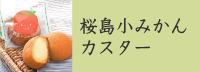 桜島小みかんカスター