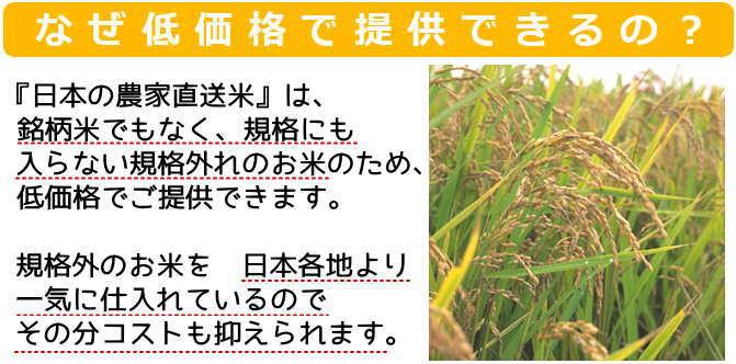 なぜ低価格で提供できるの?農家直送米