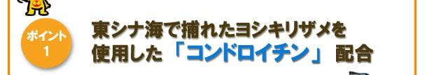 [ポイント1]東シナ海で捕れたヨシキリザメを使用した「コンドロイチン」配合