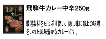 飛騨牛カレー(中辛)250g