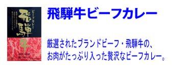 厳選【飛騨牛ビーフカレー】