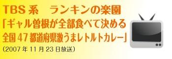 「ギャル曽根が全部食べて決める 全国47都道府県激うまレトルトカレー」