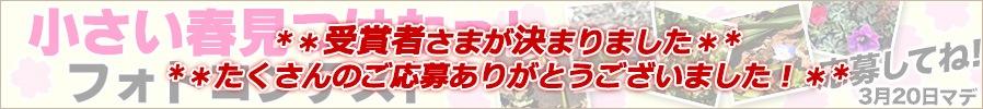 春のフォトコンテスト開催!