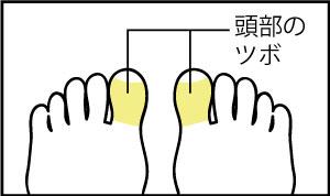 頭部の足ツボ
