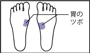 胃腸の足ツボ