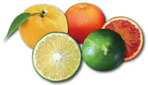 ゆず・青みかん・ブラッドオレンジ