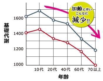 基礎代謝のグラフ