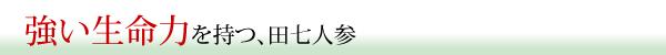 田七人参の魅力