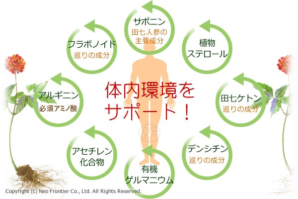 体内環境をサポート