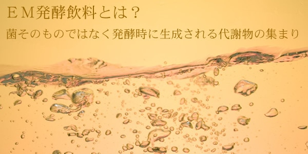 EM発酵飲料