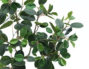 人工観葉植物フランスゴムの木1200の葉