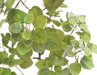 人工観葉植物まるばの木1200葉