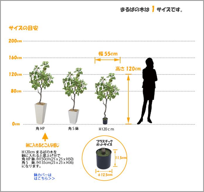 人工観葉植物まるばの木1200サイズ
