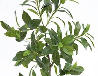 人工観葉植物フィカスナナの葉