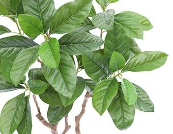 人工観葉植物ピンポンの木1200葉