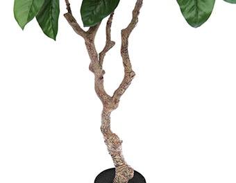 人工観葉植物ピンポンの木1200根本