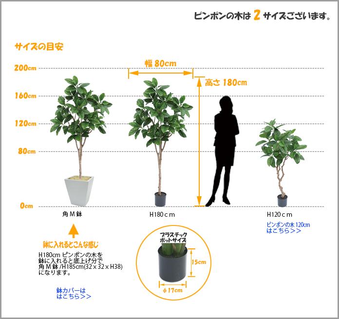 人工観葉植物ピンポンの木1800サイズ