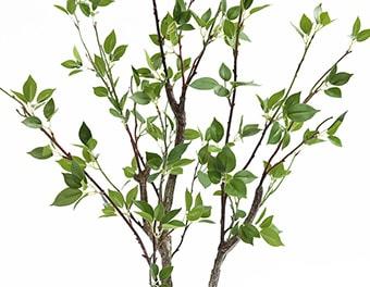 人工観葉植物シャラの木葉