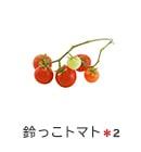 鈴っこトマト