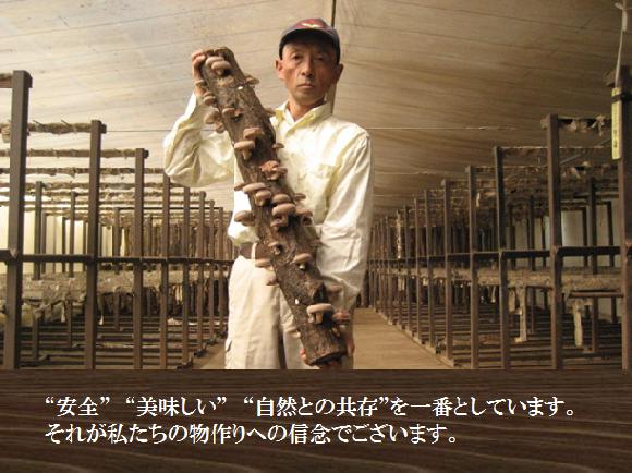 しいたけ・飯塚さん2