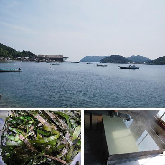 東寺献上 弓削島の藻塩