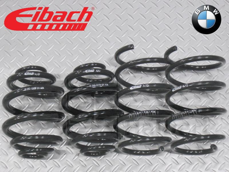 Eibach E10-20-019-01-22 Performance Pro-Kit Springs